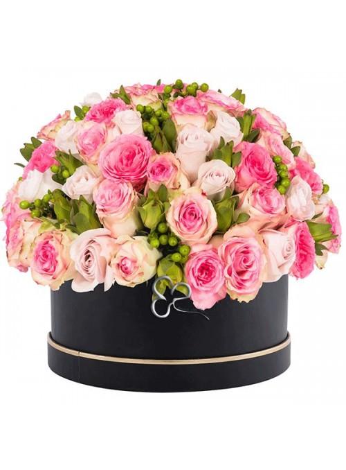 Rose pink lady