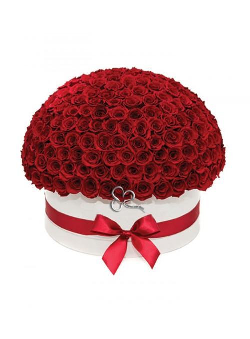 Magnifique red rose box
