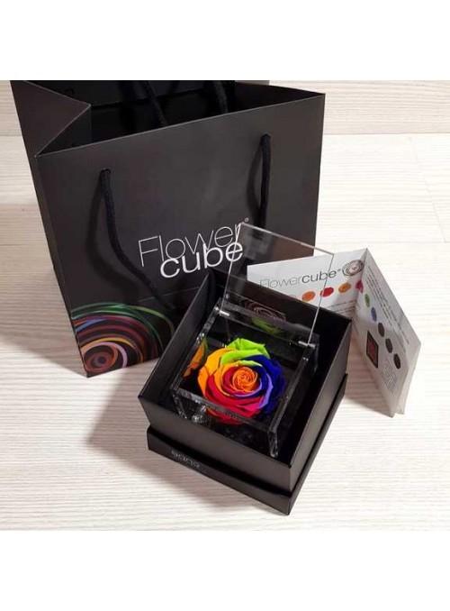 "FlowerCube Rosa stabilizzata""Rainbow"""