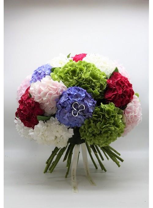 Mixed colour Hydrangea
