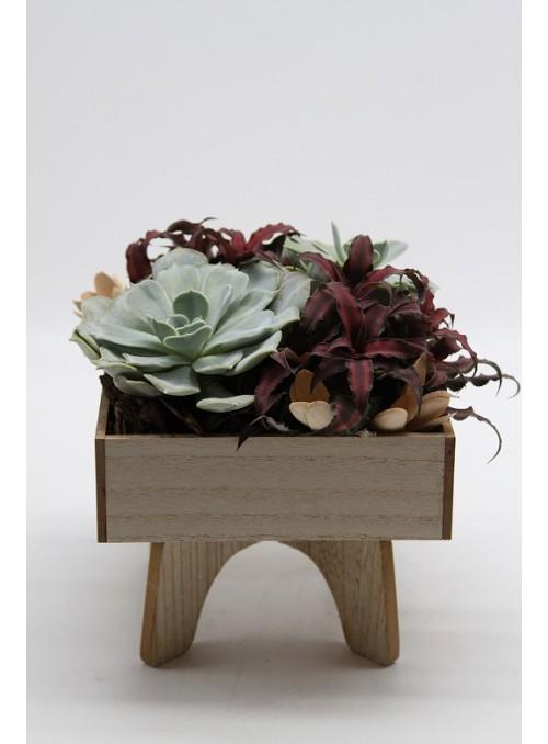 Succulent wood