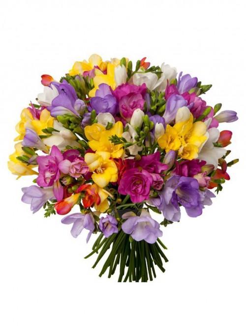 Bouquet fresie miste di colore.