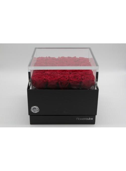 FlowerCube Platinum Edition 25 rose rosse