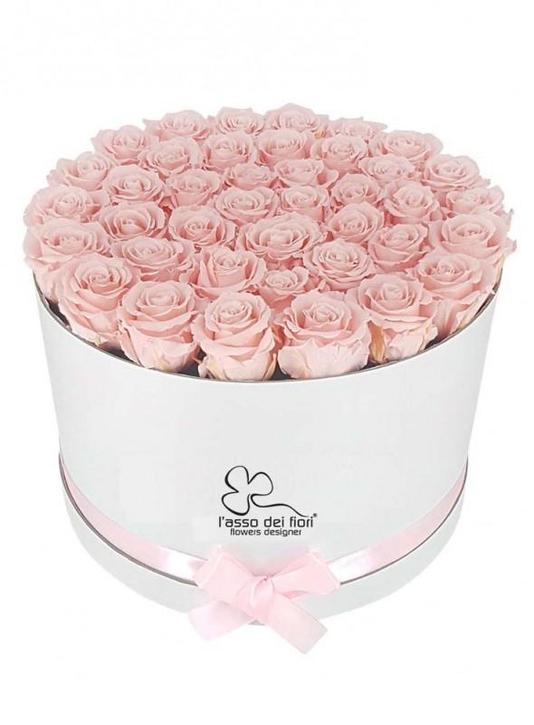 Box bianco con rose rosa.