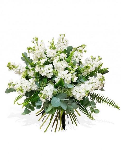 Fascio di violaciocche bianche, rifinito con eucalypto e foglie di felce.
