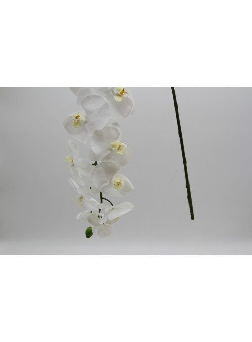 Ortensia ramo