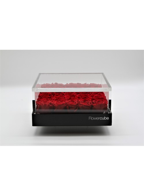 FlowerCube Platinum Edition 25 rose rosse