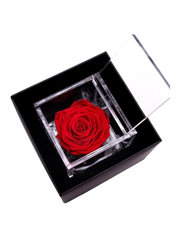 FlowerCube Platinum 120x120x110