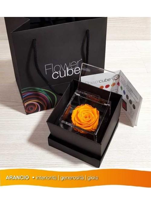 FlowerCube Rosa Stabilizzata
