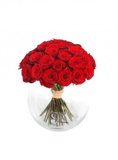 25 splendide rose rosse Red Naomi stelo corto.