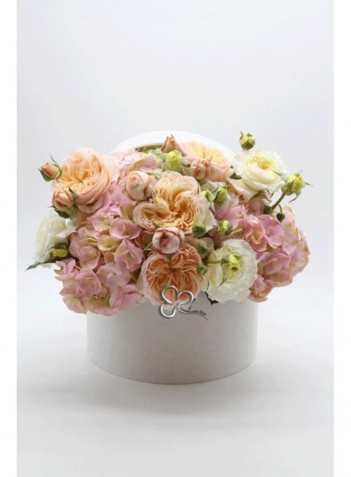 Elegance roses